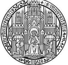 heidelberg-universitesi